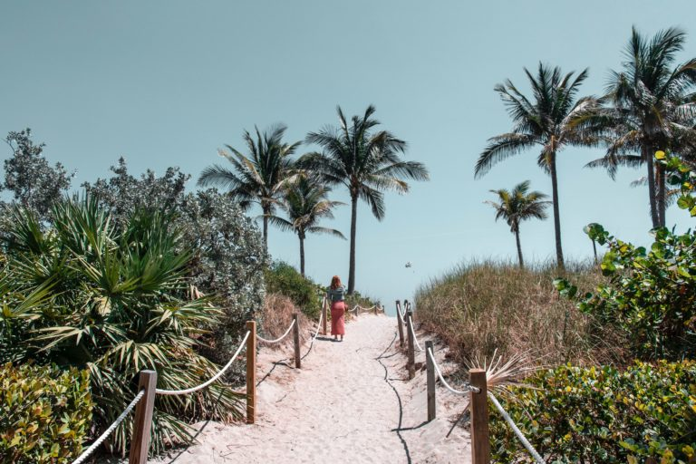 a sun-drenched sand path flanked by a rope fence heading towards palm trees