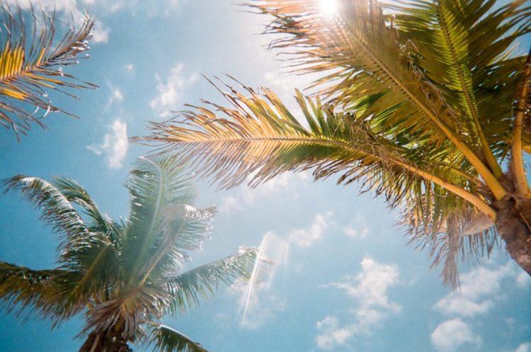 32 Beach Style Garden Ideas 21