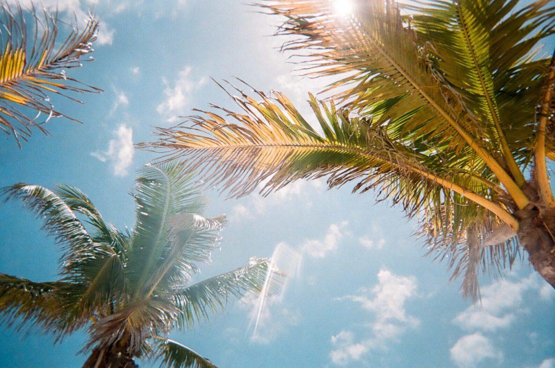 32 Beach Style Garden Ideas 22