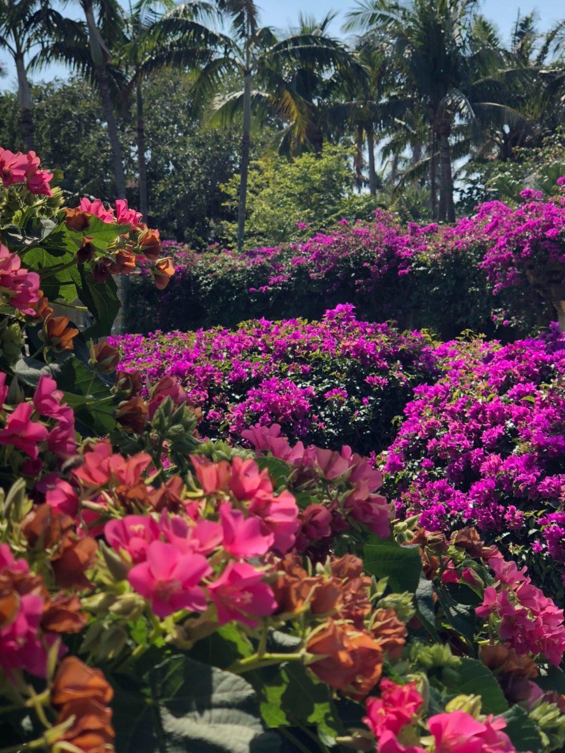 32 Beach Style Garden Ideas 24