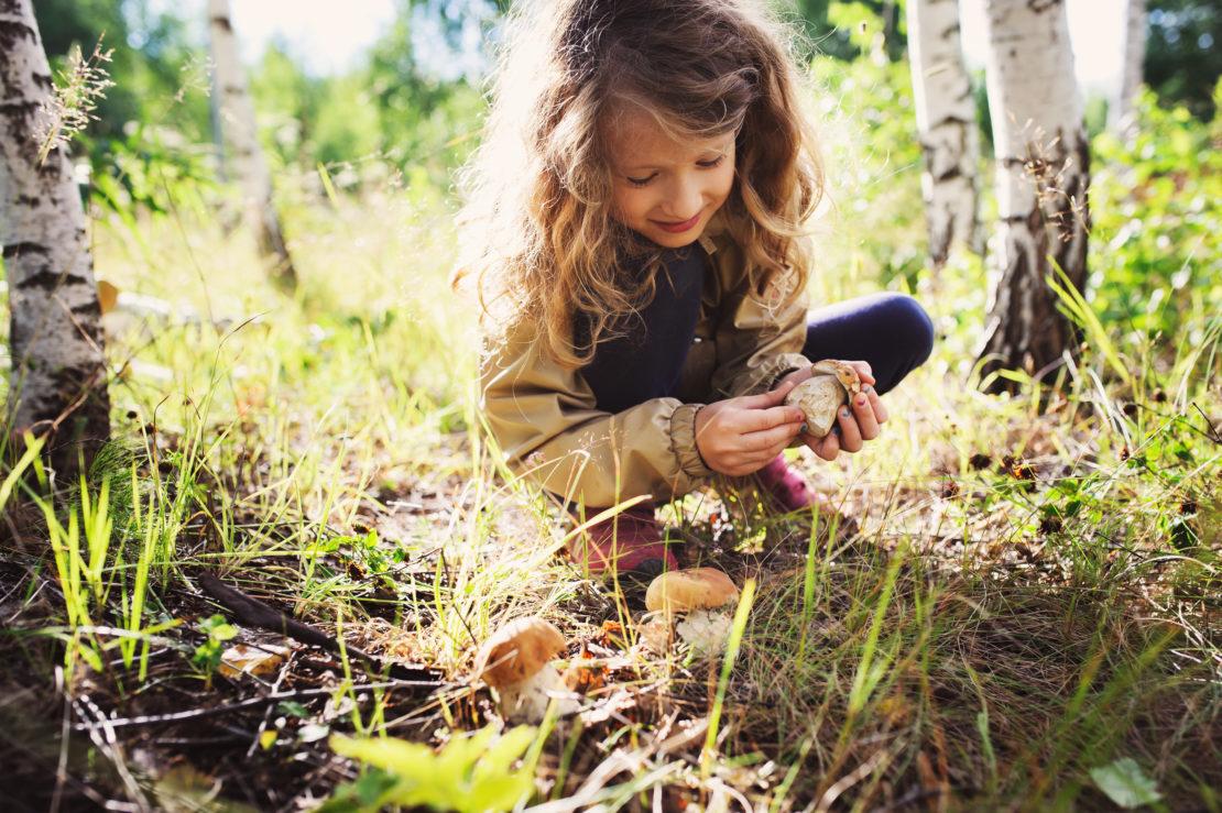 happy girl picking wild mushrooms