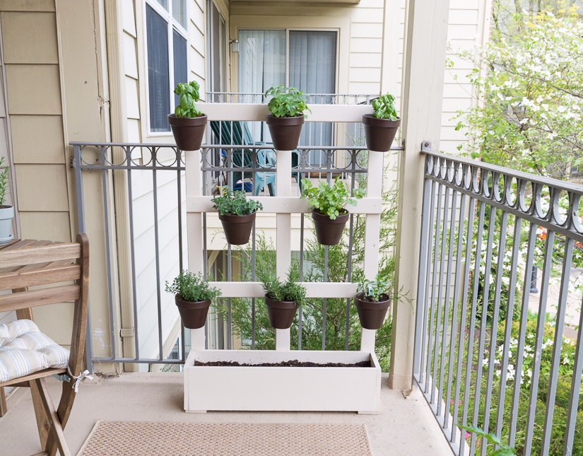 herbs in pots on a balcony, attached to a DIY pallet and planter painted white