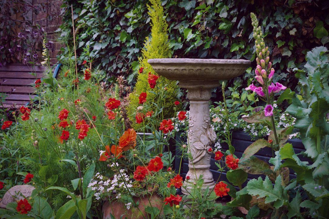 A stone birdbath nestled between wildflowers in an enchanted garden