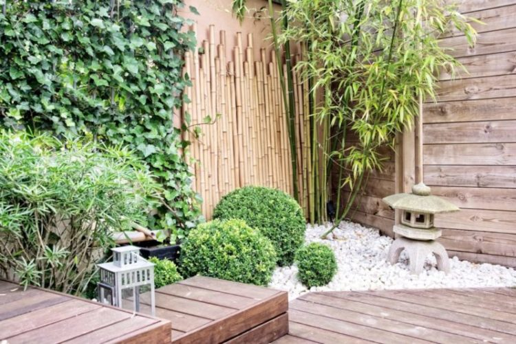 A small, Japanese-inspired garden with decking, box shrubs, pebbles and lanterns