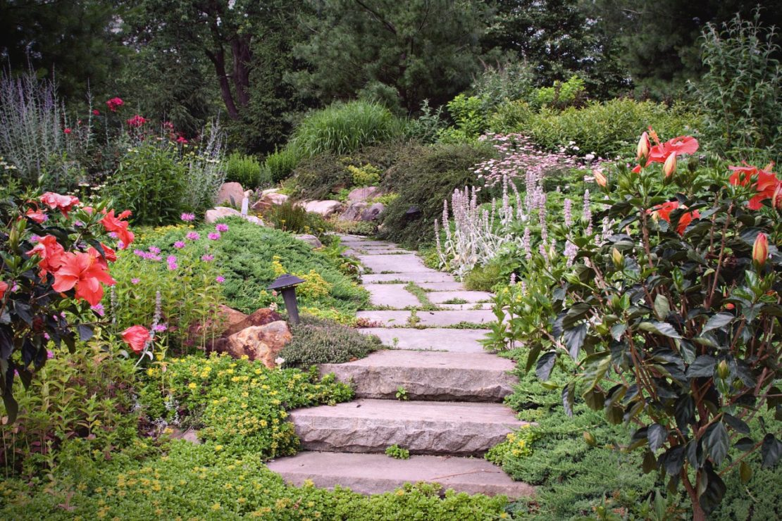 stone steps and a paved path lead through mossy flower beds