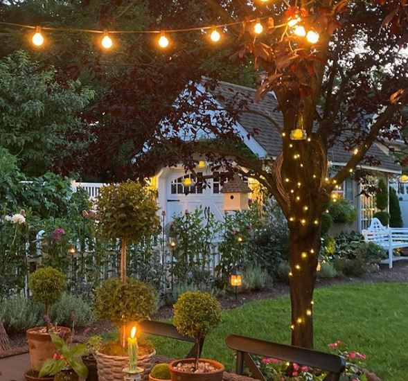 a garden tree with fairy lights coiled up the trunk and string lights tied to a branch