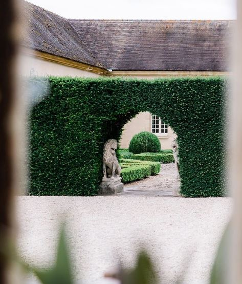 French themed garden ideas combining a gravel driveway and hedge archway into a topiary garden