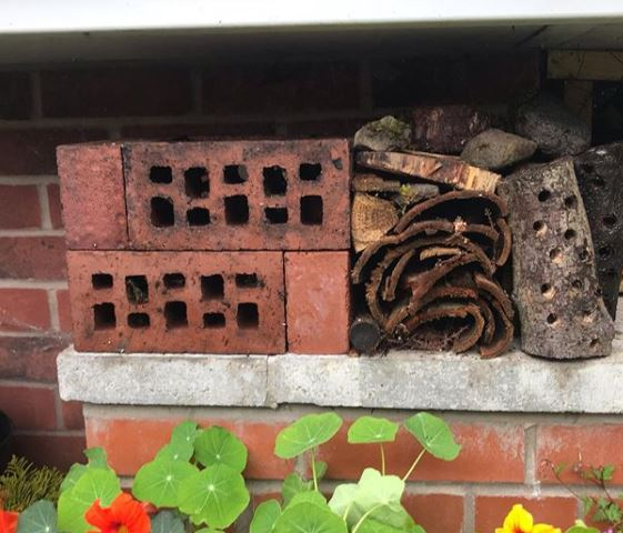 a DIY bug hotel made from air bricks, bark and sticks, wedged in the gap between a step and a wall