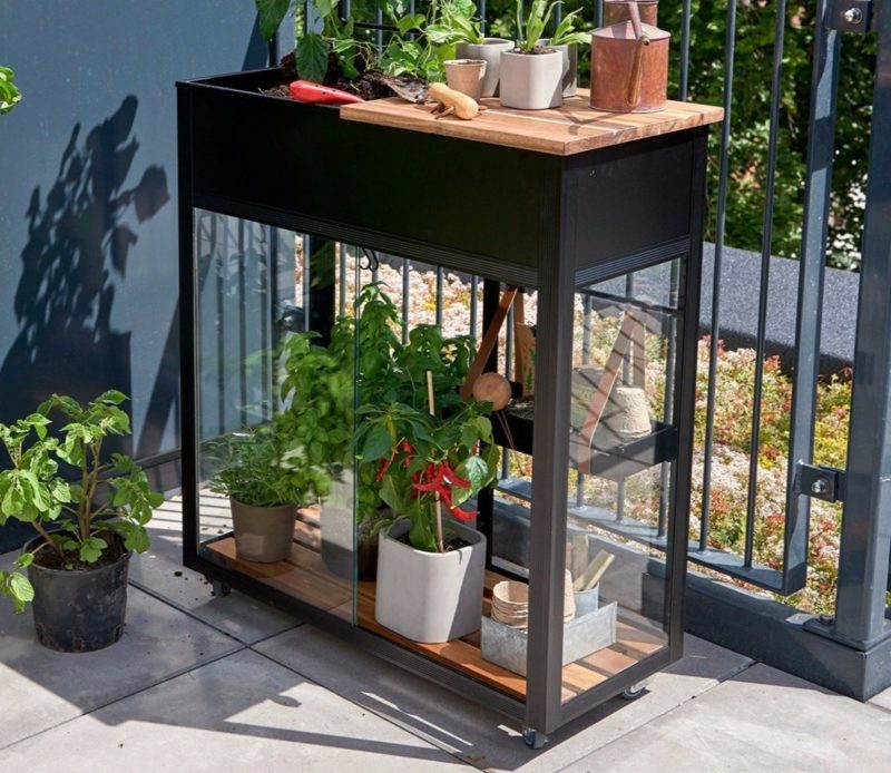 a balcony green house made from black metal and glass, with healthy plants inside