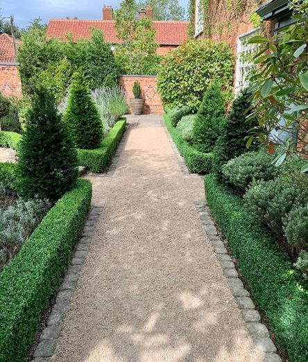 a neat gravel path with short manicured hedges either side