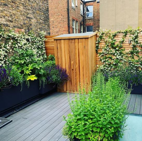 a small half-shed in a rooftop garden, made from a medium wood that matches the fence.