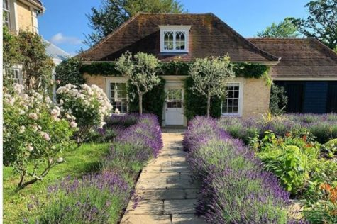 a very cute cottage with a stone path that has lavender shrubs along either side and two symmetrical bay trees flanking the front door