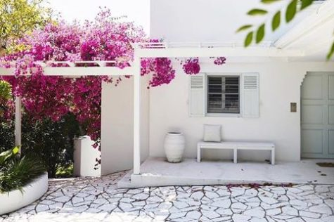 a whitewashed house with a completely white patio and pergola. Growing around the pergola is a bougainvillea with striking pink flowers