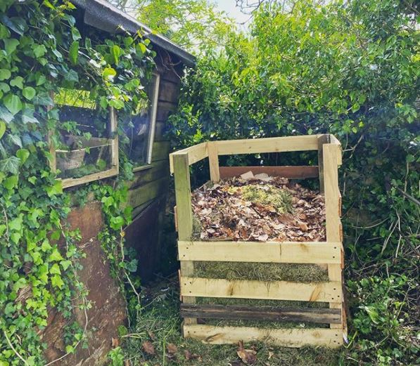 an open compost bin next to a shed covered with overgrown ivy