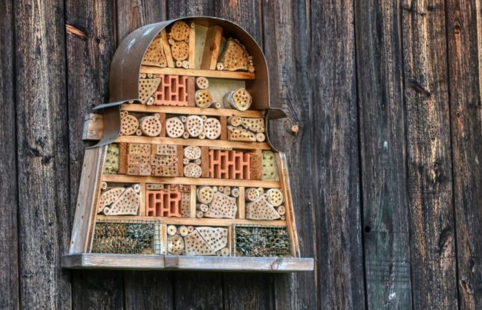 an unusual, keyhole shaped insect hotel
