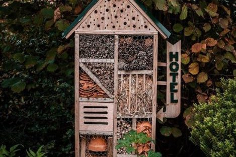 garden bug hotel ideas - a small insect hotel with a little hotel sign on the side