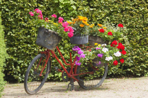 vintage garden decor ideas using an old bicycle with baskets of flowers on the front, rear and seat
