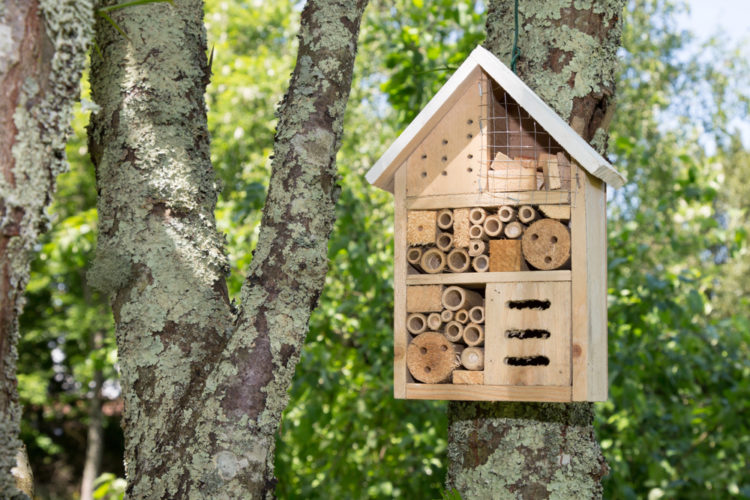 a small wooden bug hotel attached to a tree