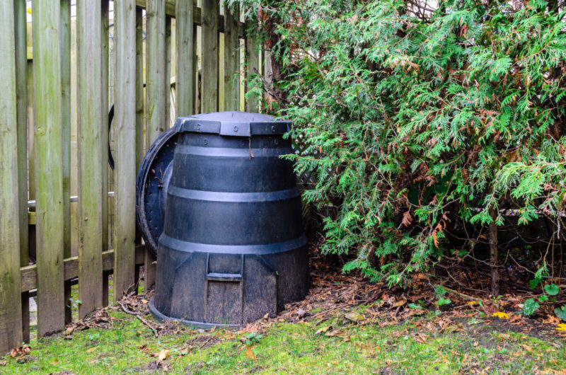 a black plastic compost bin is tucked between a fence and large bush
