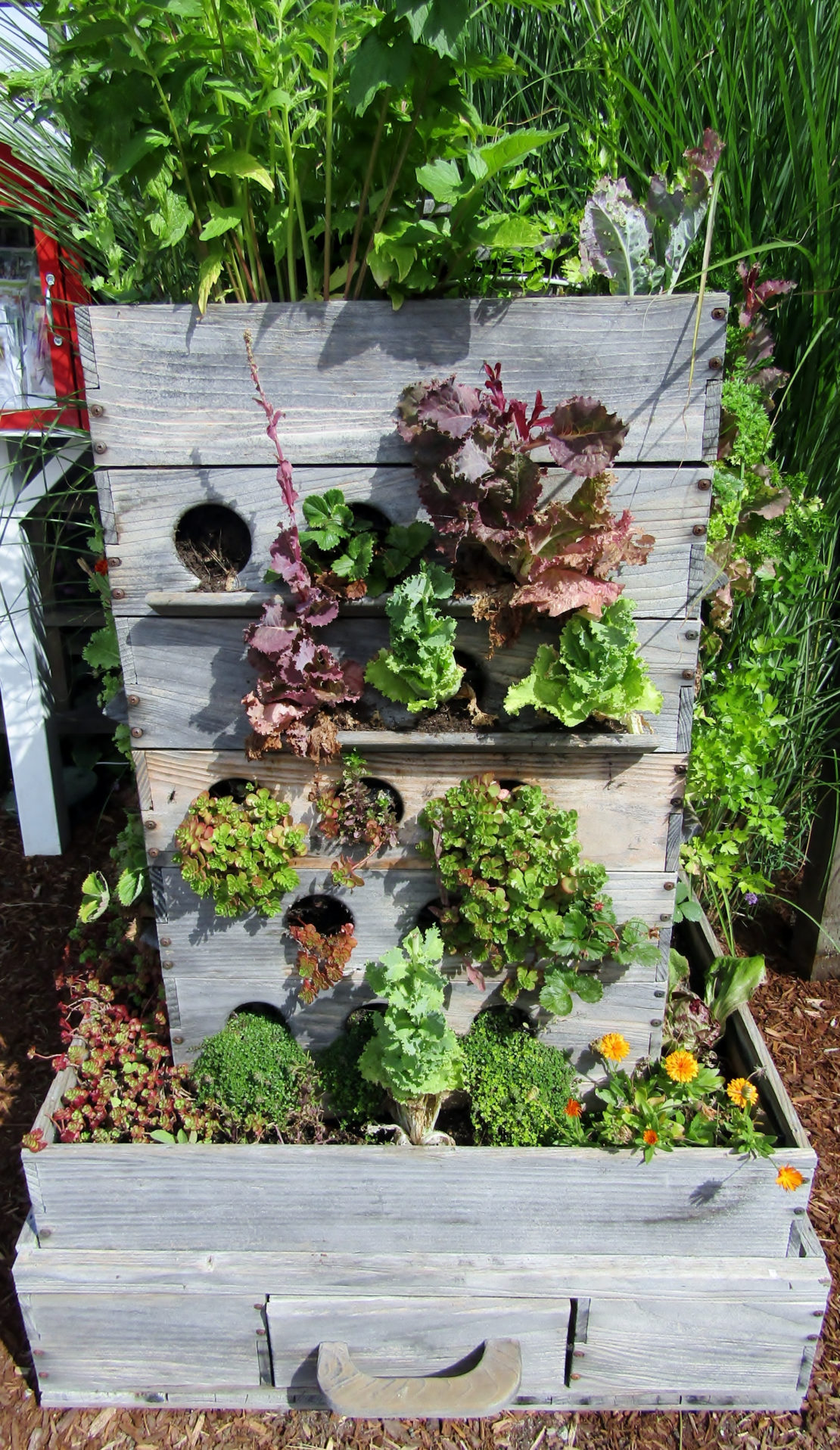 garden compost ideas - a wormery style compost bin made from repurposed wooden drawers