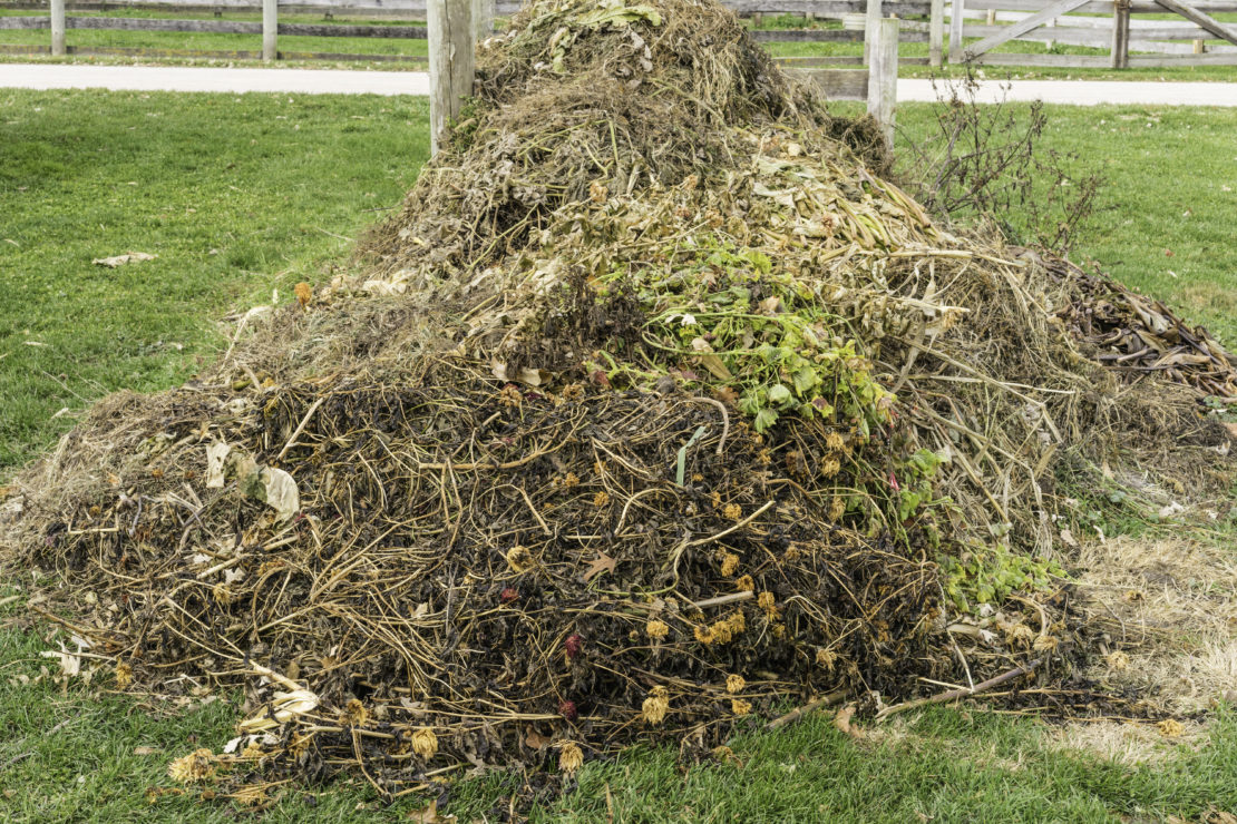Garden Compost Bin Ideas: The Ultimate Guide to Composting at Home 1
