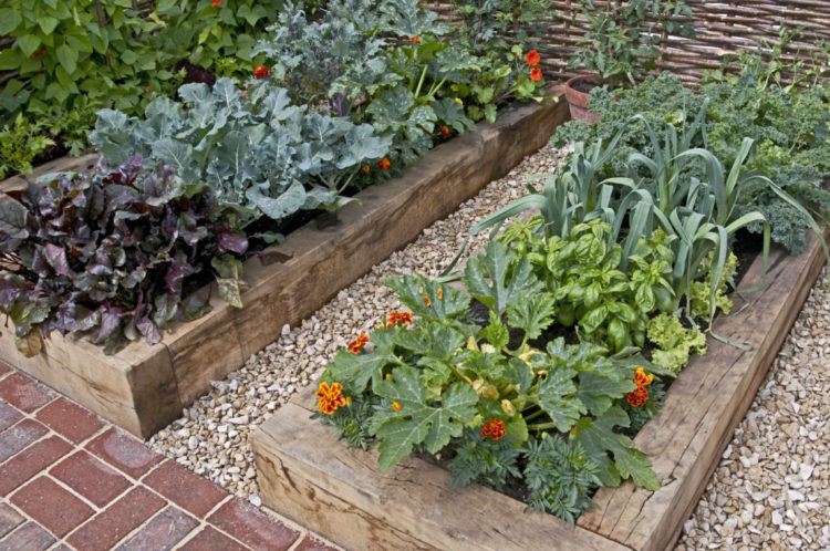 a raised planter made from reclaimed railway sleepers filled with edible plants