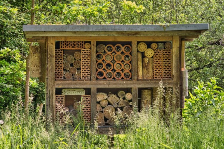 a shed-sized insect hotel in the middle of long grass in a field