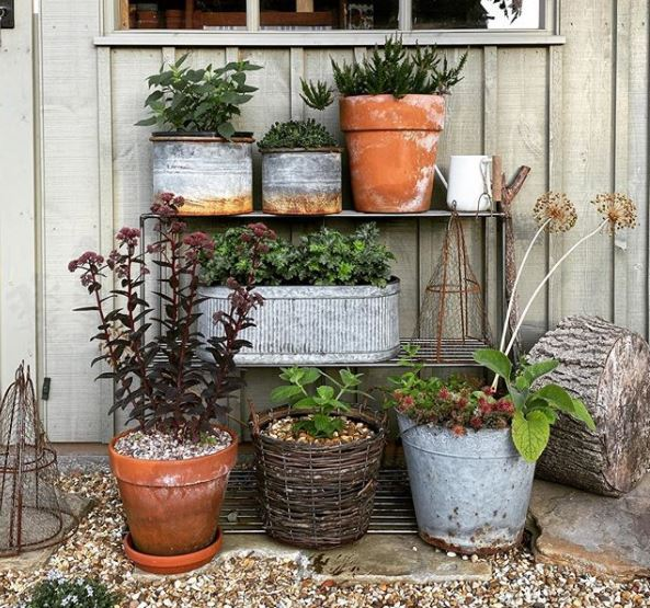 worn metal shelves with a collection of rusty metal planters, clay pots and wicker baskets used for plants