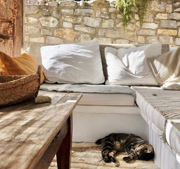 a shaded garden bench with a cat sleeping on the stone floor