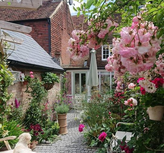 British themed garden ideas with blooming rose bushes and a weathered patio