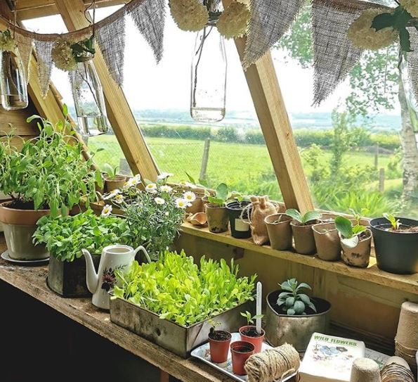 The inside of a potting shed looking over a garden