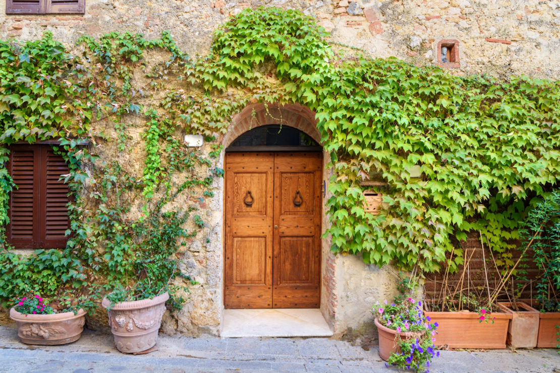 a wooden doorway with beautiful vines growing all around it