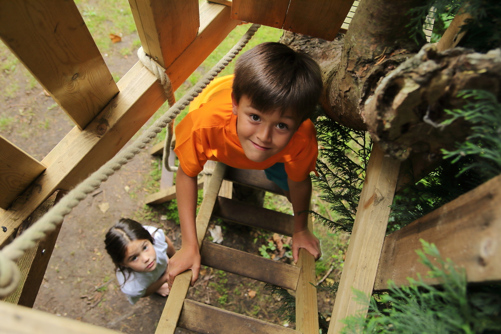 two children excitedly climbing a ladder to a treehouse