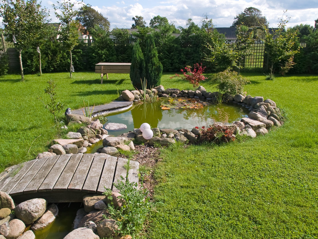 a pretty, natural looking pond with a miniature bridge
