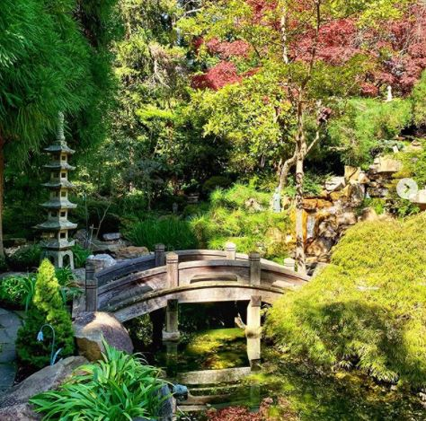 a Japanese garden with green and red foliage, a stone lantern and a small bridge