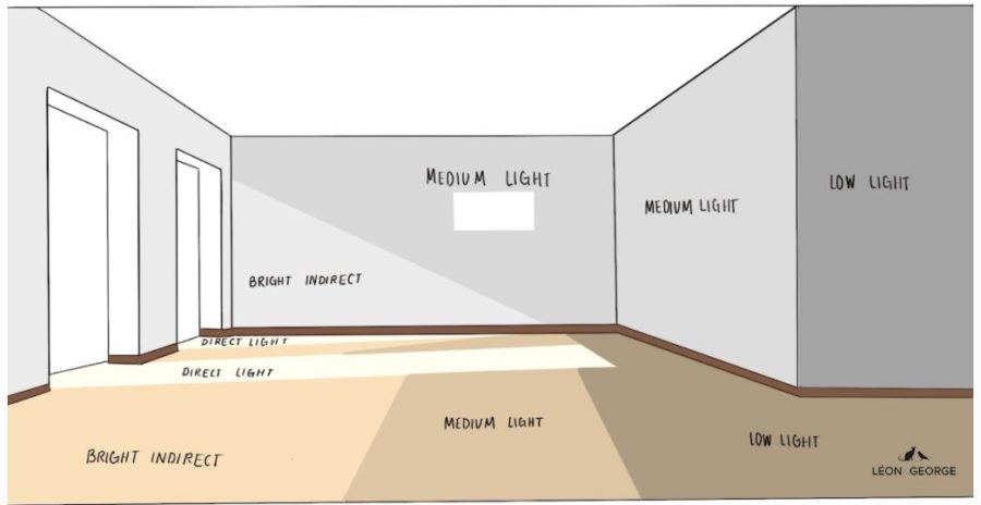 Diagram showing different levels of light for plants in a room