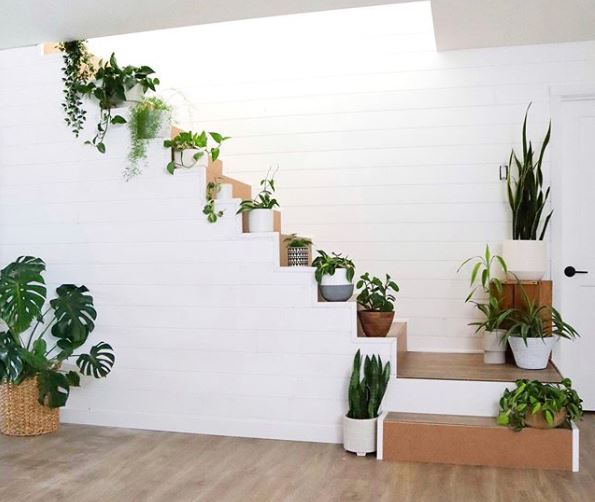 indoor garden ideas with plant pots on each step in a staircase