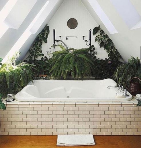 a modern bathroom filled with plants, ferns, monstera and pothos