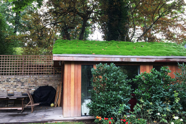 a modern shed with a green roof made from plants