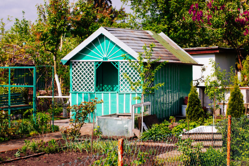 turquoise garden shed ideas in an allotment