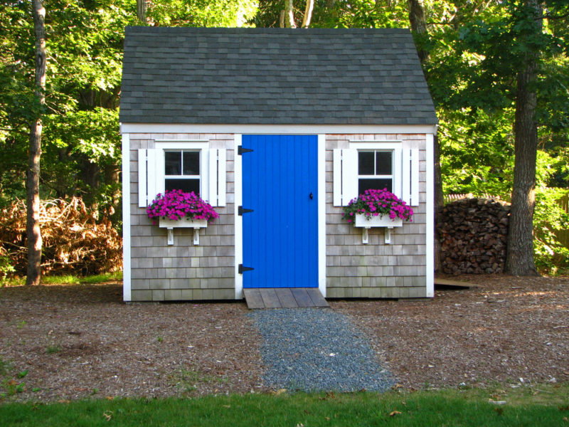 a grey shed with blue door, white window shutters and purple flowers