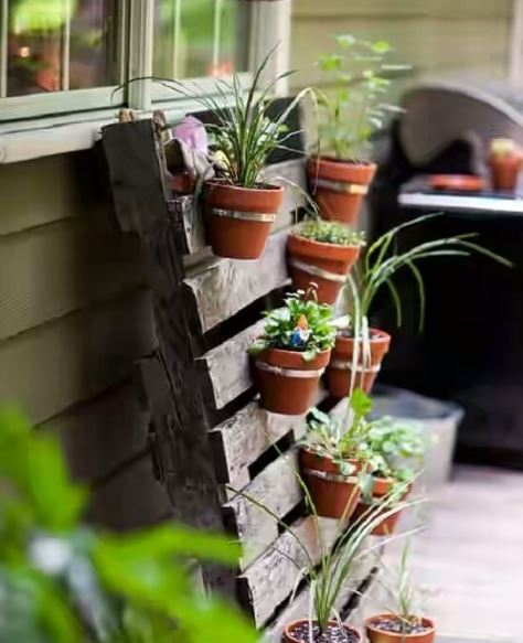 an untreated pallet with potted plants hanging from the slats