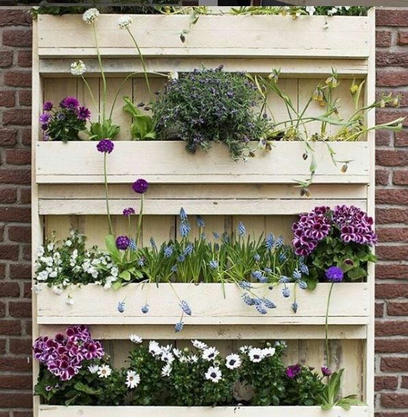 a plant shelf made from a recycled wooden pallet