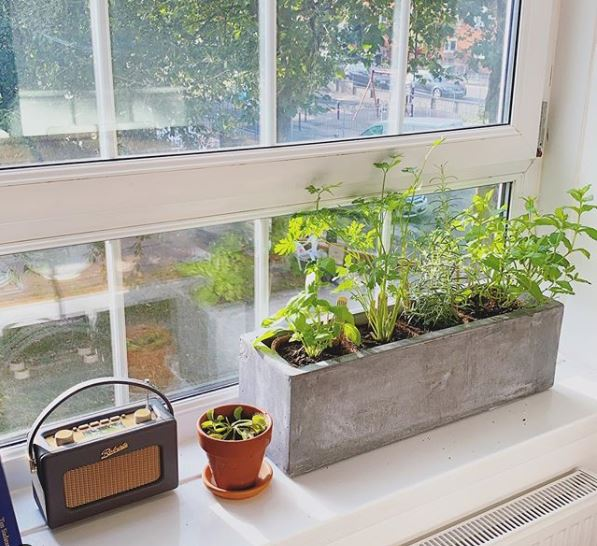 a concrete block being used as a pot for herbs on a windowsill