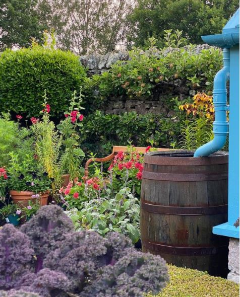 cottage garden ideas with lots of mixed flowers, including hollyhocks