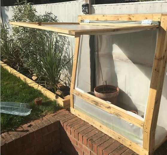 a mini greenhouse made from recycling wooden pallets