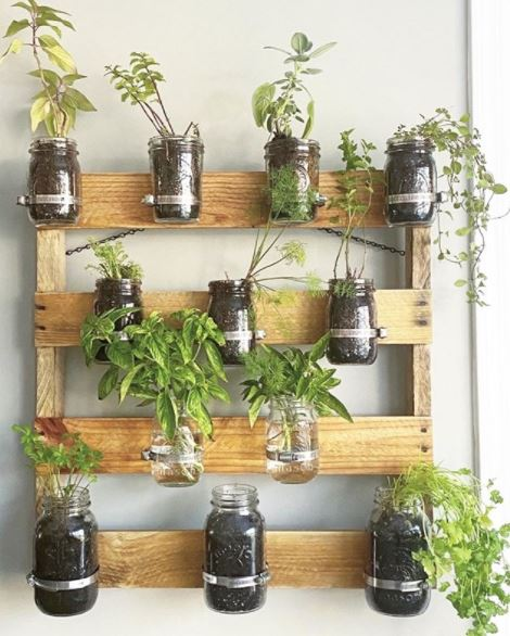 a DIY shelving frame with jars attached as plant pots