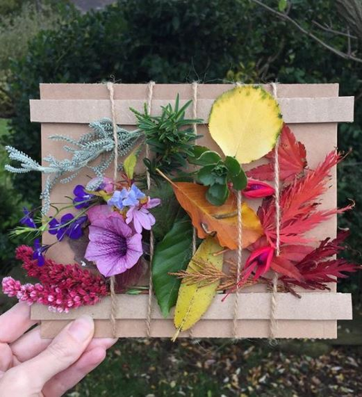 a nature board created using garden flowers and leaves in different colours