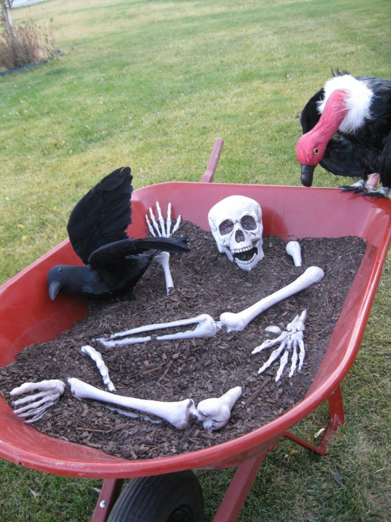 a wheebarrow with a plastic skeleton half-buried in dirt