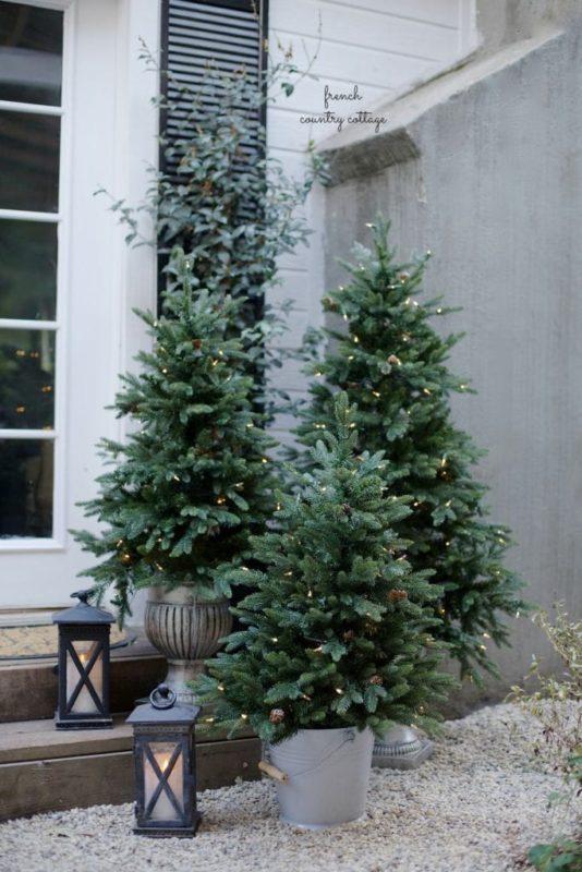 A trio of fir trees make for beautiful christmas garden ideas